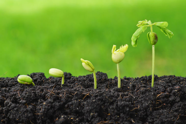Meet the Top 5 Startups in India which Aim at Revamping the Agricultural Sector.